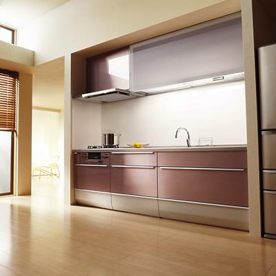cleanlady_201302_01.jpg